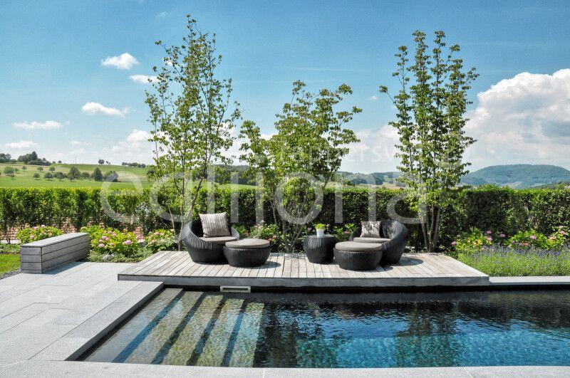 Swimming-Pool mit Lounge auf Holzdeck