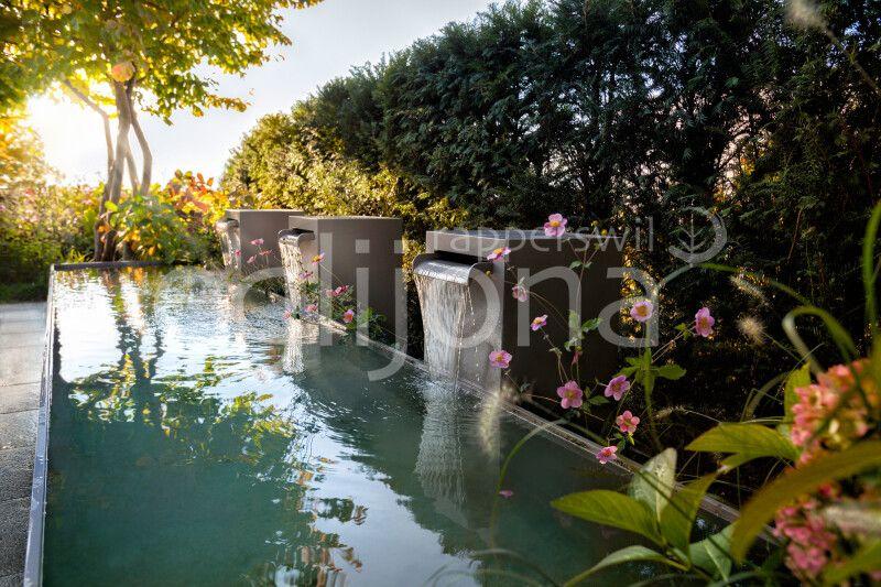 Brunnen mit Wasserfall-Speiern