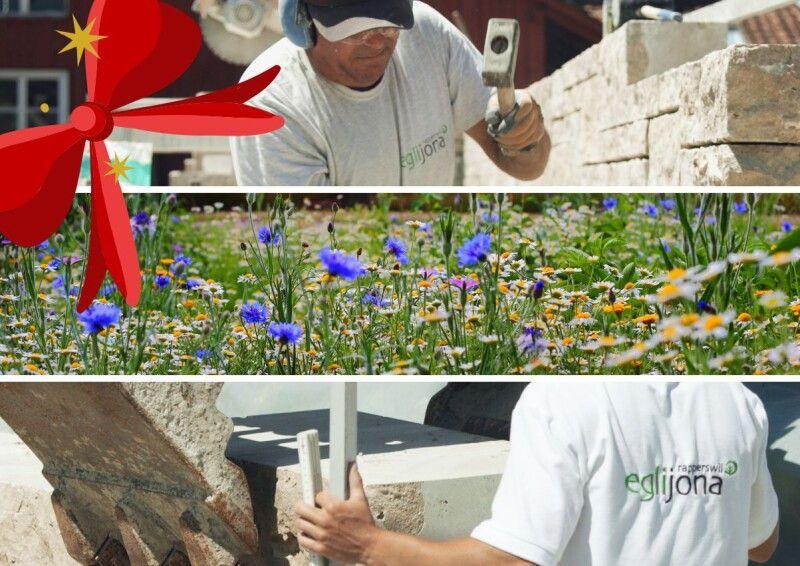 Wir schenken Rapperswil-Jona Blumen zu Weihnachten