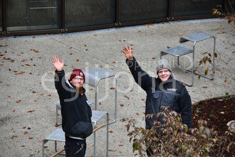 Gartenbau Rapperswil-Jona: Pflanzarbeiten