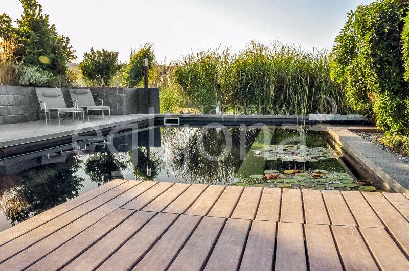 Schwimmteich mit Living-Pool-Technik