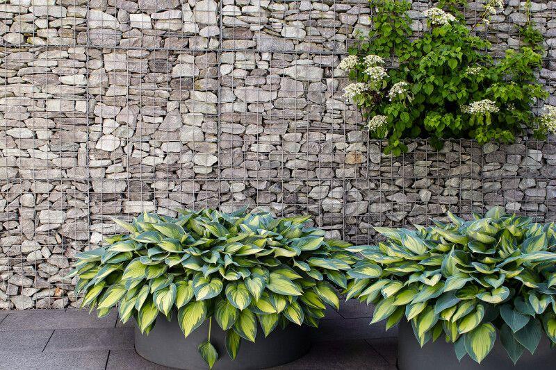 Drahtschotterkorb Gabionen Mauerbau Gartenbau