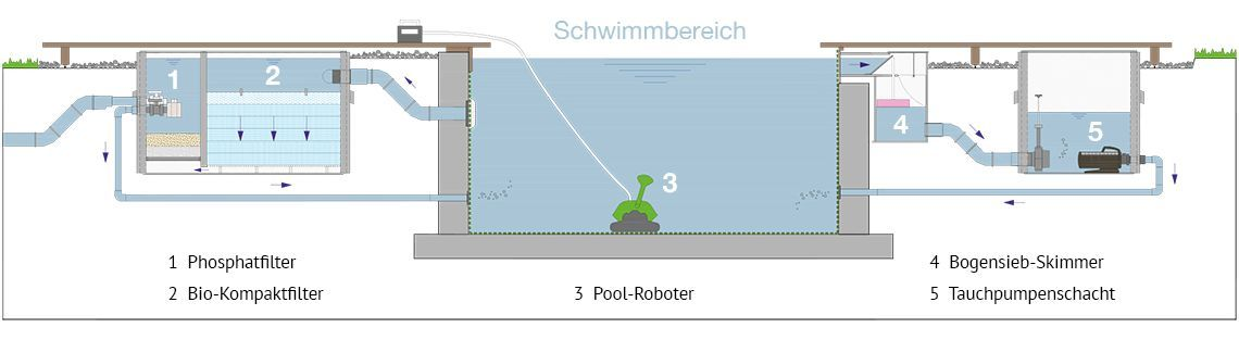 so-funktioniert-ein-living-pool-naturpool
