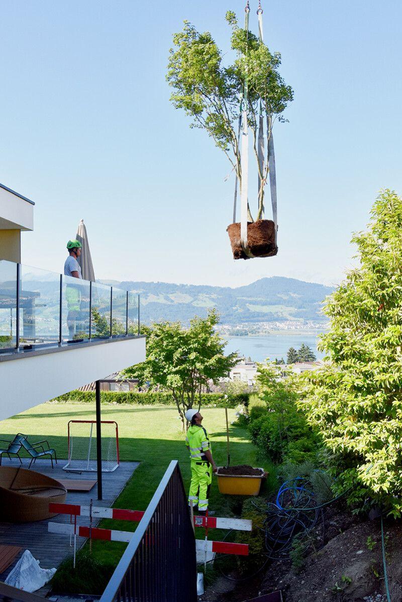 Gartenumgestaltung EFH, Region Zürichsee