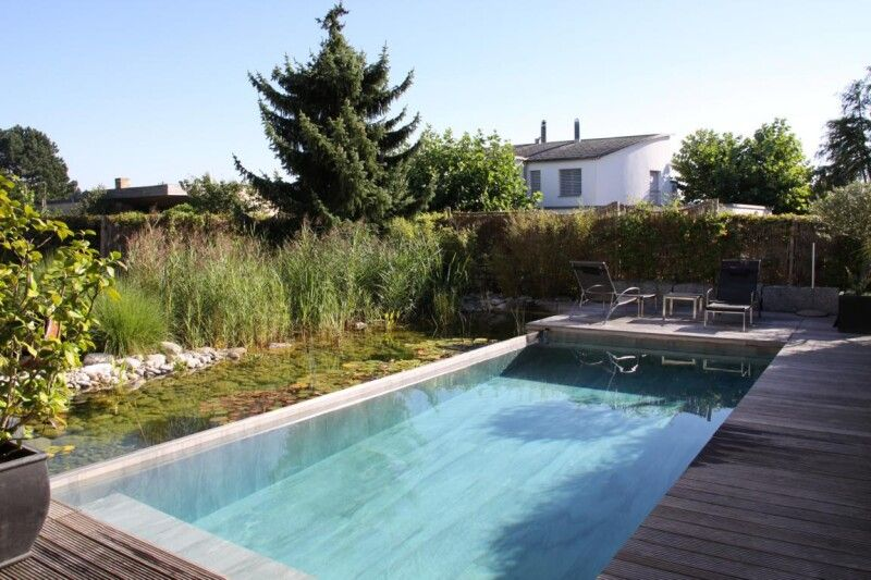 Naturpool Swimming-Pool mit Feinsteinzeug