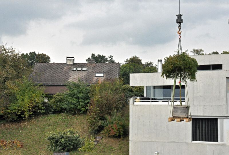 Terrassengestaltung eglijona Gärtner Rapperswil