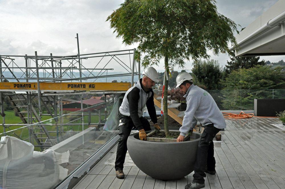 terassengestaltung terrassengestaltung eglijona gartner rapperswil mit treppe