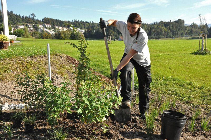 Gartenbau Rapperswil-Jona Gärtner