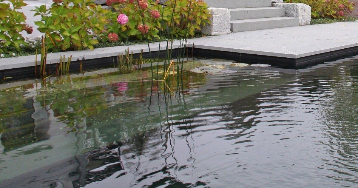 jetzt living pool oder schwimmteich einwintern eglijona ag. Black Bedroom Furniture Sets. Home Design Ideas